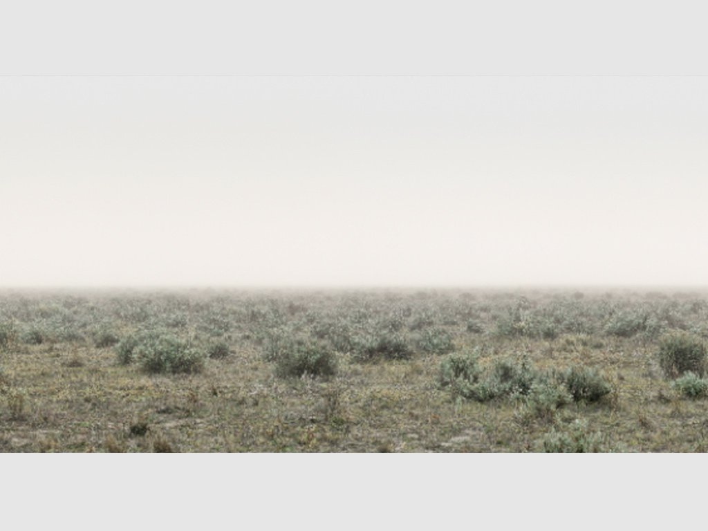 'Loleep' (detail) by Sarah Dugan